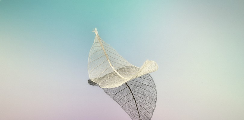 9月全国精彩艺术展览集锦