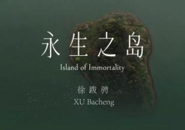 永生之岛:徐跋骋个展