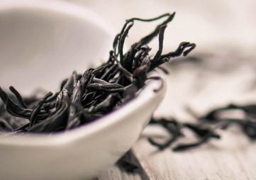 2019中国(郑州)茶生活跨年展