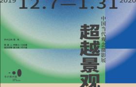 超越景观——中国当代观念摄影展 (5)
